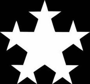 Glitter Tattoo FRACTAL STAR ster