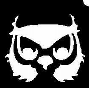 Glitter Tattoo OWL HEAD uil