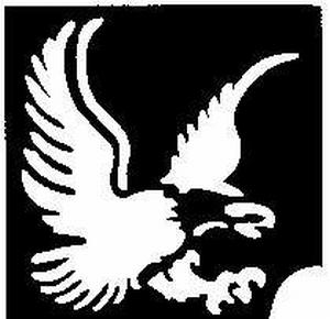 Glitter Tattoo EAGLE adelaar
