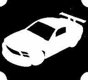 Glitter Tattoo CAR auto