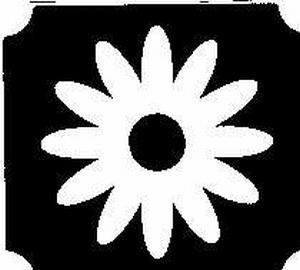 Glitter Tattoo FLOWER DAISY madelief bloem