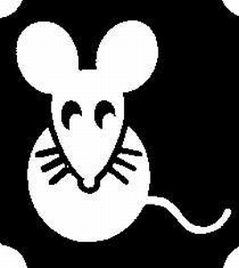 Glitter Tattoo MOUSE muis