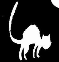 Glitter Tattoo CAT 3 kat