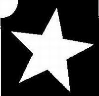 Glitter Tattoo STAR ster