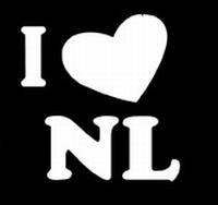 Glitter Tattoo I LOVE NL ik houd van Nederland
