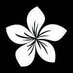 Glitter Tattoo FLOWER PLUMERIA bloem