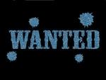 Glitter Tattoo COWBOY WESTERN WANTED gezocht