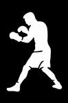 Glitter Tattoo boxer bokser